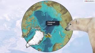 Русские исследователи полярных широт