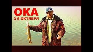 Рыбалка. Двое Суток на Оке ловим хищника с Больничкой и Леопольдом.