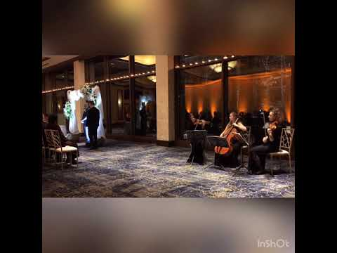 Canon in D String Trio live