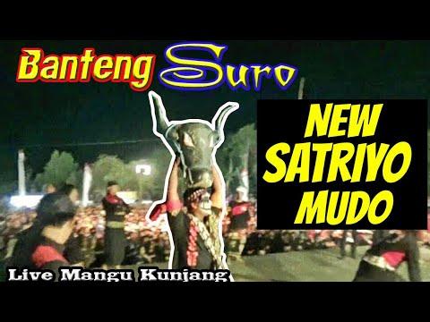 Ngamuknya Banteng Suro & Singo Kumbang Super Ganas & Sangar--New Satriyo Mudo Live Mangu Kunjang