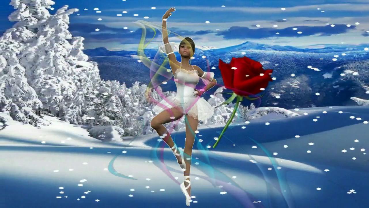Роза и снег