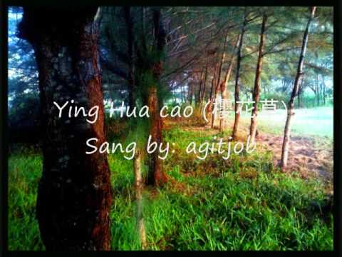 Ying Hua Cao - Sweety (cover)