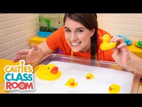 Cantec nou:  Caitie's Classroom Live -  Bath Time!