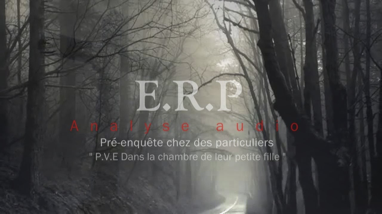 E.R.P  Un P.V.E qui nous a surpris!