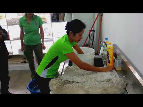 Sheep Skin wash