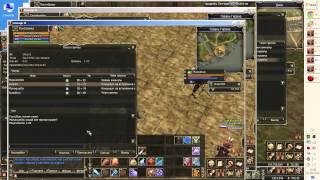 Збір ЦЦ (командного каналу) в Lineage 2 - як зібрати і що робити