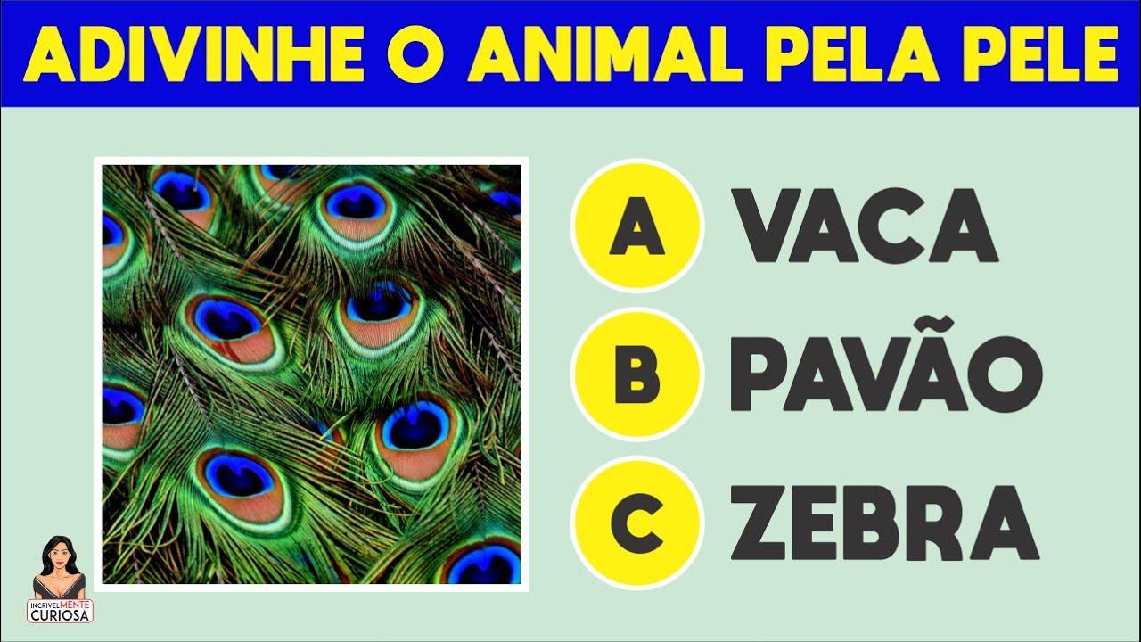 ADIVINHE QUAL É O ANIMAL PELA PELE [ IncrivelMente Curiosa ]