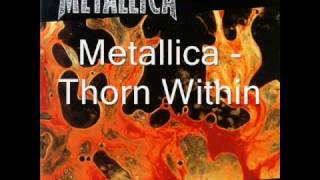 Metallica - Thorn Within (with lyrics)