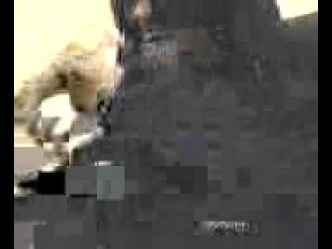 Youtube: Interview SHERYO inédite à l'ancienne