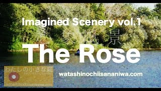 Bette Midlerの歌うThe Rose(作詞作曲 Amanda McBroom)に 薔薇への想...