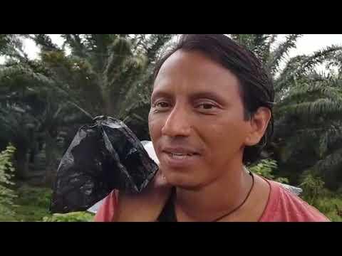 Así identifica la PNC a los migrantes hondureños en Ayutla, San Marcos