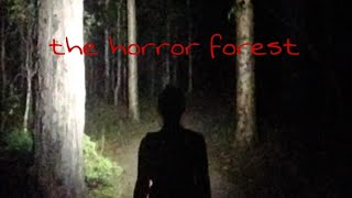 The horror forest story ||The Animation story ||