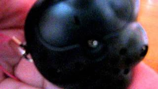 Что говорит Кошачья лапка?