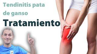 Espinilla la de la tendinitis tratamiento en