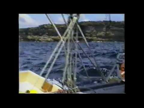 Botany Bay to Seal Rocks on Shockwave 37 Catamaran GROWLER 1992
