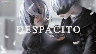 Despacito x faded ~ 1/2 hour | mashup despacito với faded | syndra musicvn
