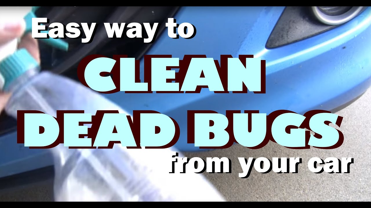 easy way to clean remove dead bugs from your car youtube. Black Bedroom Furniture Sets. Home Design Ideas
