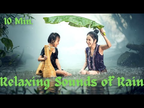 10 Min Relaxing Nature sounds of Rain, Calming Music, Stress Relief Music, Meditation Music.
