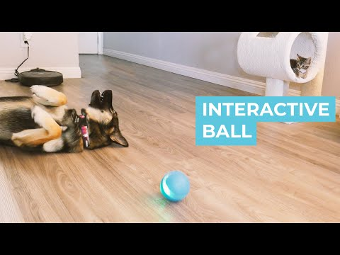 Interactive Ball Review