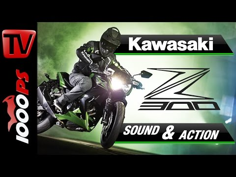 2015 | Kawasaki Z300 | Soundcheck, Action & Wheelies