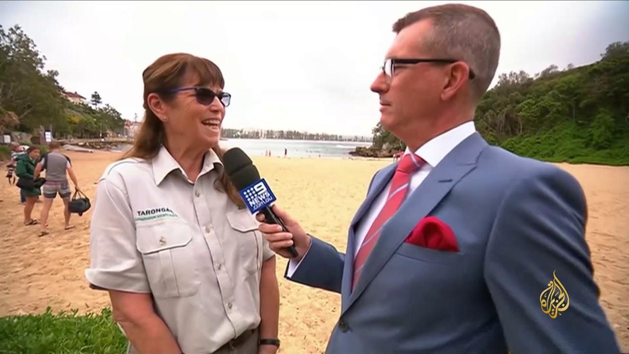 الجزيرة:هذا الصباح- حديقة حيوان أسترالية تحتفي بشفاء طيور البطريق