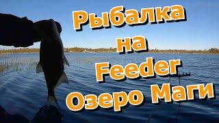 Рыбалка на озере Маги Feeder Fishing Удомельский район