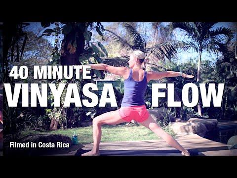 40 Minute Vinyasa Flow Yoga Class - Five Parks Yoga (First class from Costa Rica)