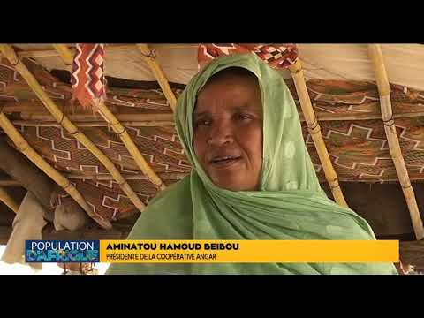 Population d'Afrique, Autonomisation des femmes et des filles en Mauritanie