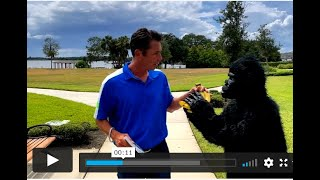 How This Gorilla Won a Free Book and How You can Also to Win your day Today!