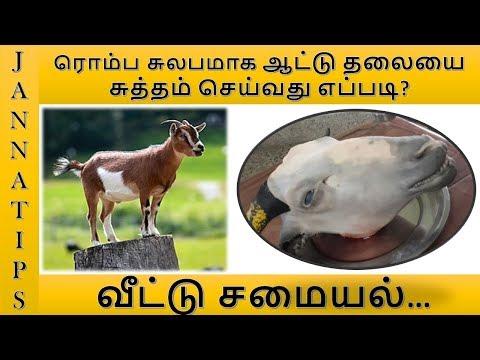ஆட்டு தலையை சுத்தம் செய்வது எப்படி?/How to Clean Goat's head/Cleaning/Special Cleaning Tips in Tamil