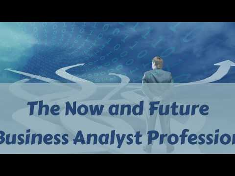 Part 6: The Now and Future Business Analyst Profession