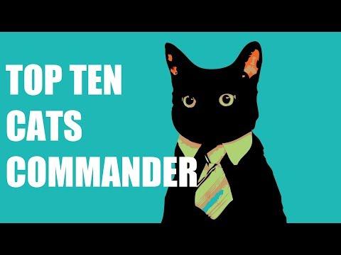 Top Ten MTG: Best Cats In Commander