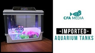 KOLATHUR | BEST IMPORTED TANKS | TURTLE TANKS | WITH AUTOMATIC FILTERATION, STARTS FROM 1000RS | #10