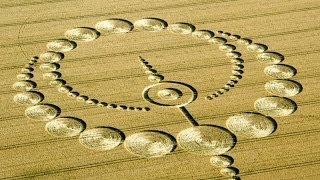 Crop Circle 2012 etchilhampton 28 july 1 of 3 standing wheat tied elegantly