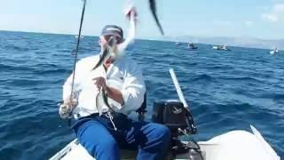 рыбалка в керчи на море