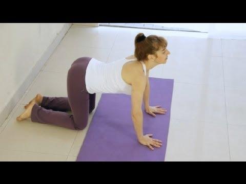 Posturas De Yoga Para Principiantes Tecnicas De Yoga Youtube