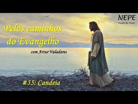 Pelos caminhos do Evangelho #55 - Candeia