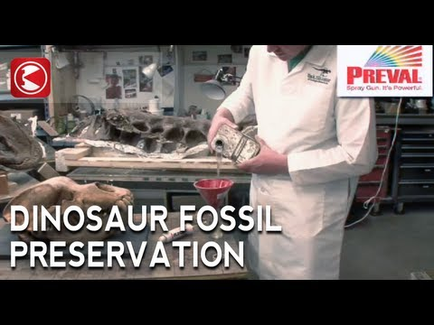 Preval Sprayer: Preserving Fossils at Black Hills Institute
