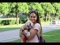 Жизнь с двумя собаками mp3