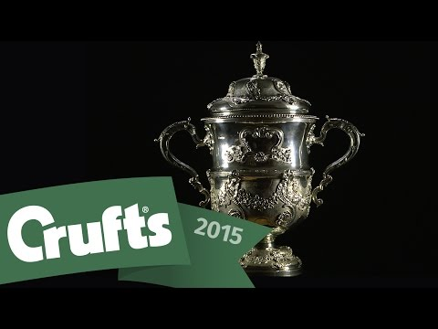Day 4 Live including Best In Show | Crufts 2015