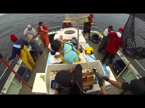 Fishing with the California Collaborative Fisheries Program Staff