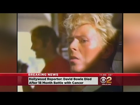 Breaking News: Rock Icon David Bowie Reportedly Dead At 69