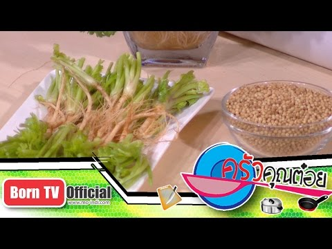 ประโยชน์ของผักชี 22 ก.ย.58 (1/2) ครัวคุณต๋อย