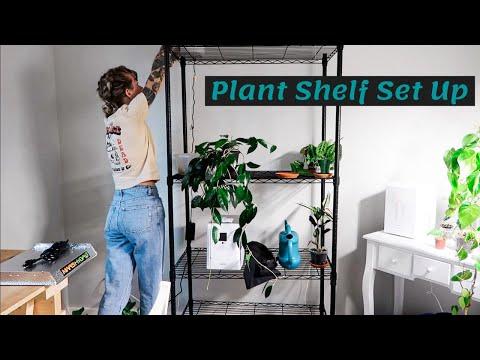 Plant Shelf Set Up + Mars Hydro TS600 Grow Light Unboxing!