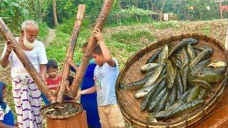 বাঁশ দিয়ে মাছ ধরার দারুন কৌশল ।। Amazing new fishing technique - Can you Believe this Unique Fishing