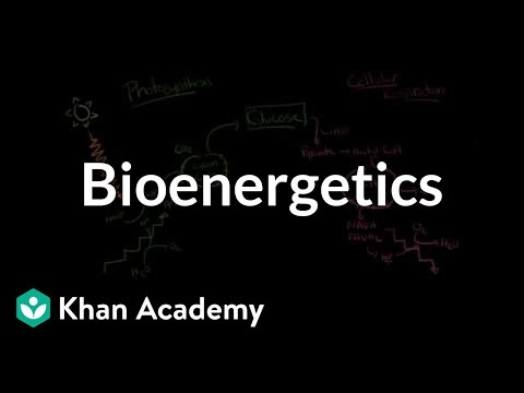 Bioenergetics: The transformation of free energy in living systems | MCAT | Khan Academy
