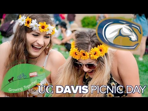 PICNIC DAY | UC DAVIS [RECAP 2017]