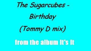 The Sugarcubes - Birthday (Tommy D mix)