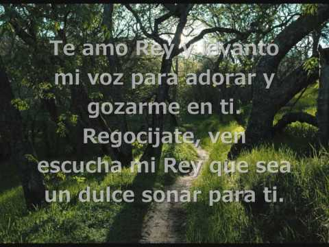Te Amo Rey