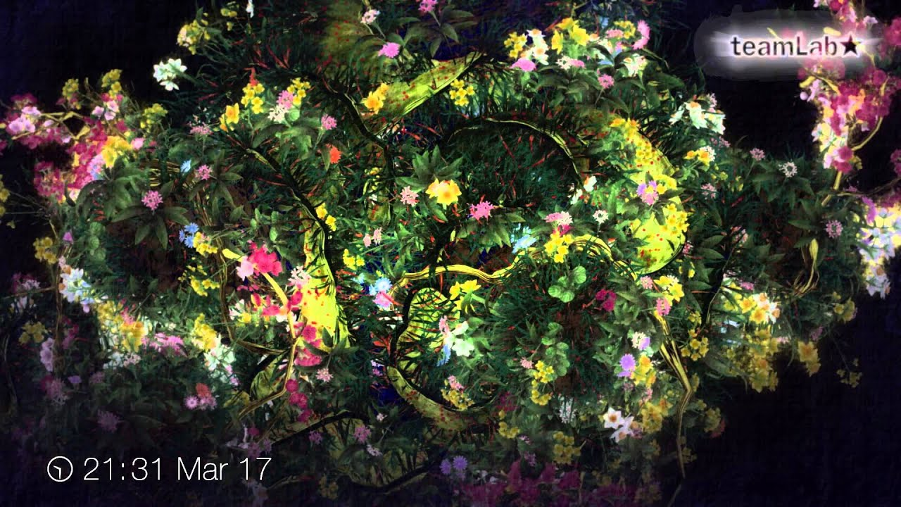 time blossoming flowers beta ver 時に咲く花 beta ver youtube